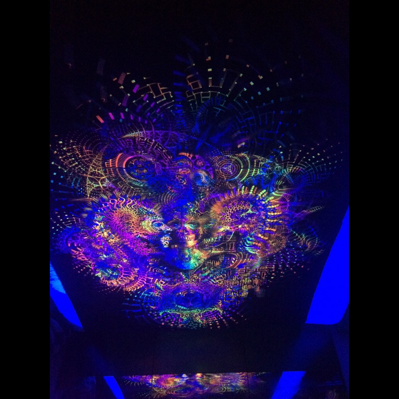 Psychedelic UV Wall Hanging «Volality»
