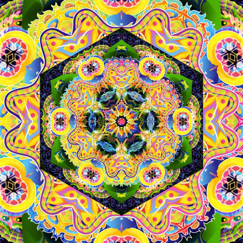 "Hippie trippy spiritual art ""Bali Jungle Mandala"""