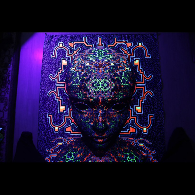 "Trippy Wall Art UV-tapestry ""PREDATOR"""