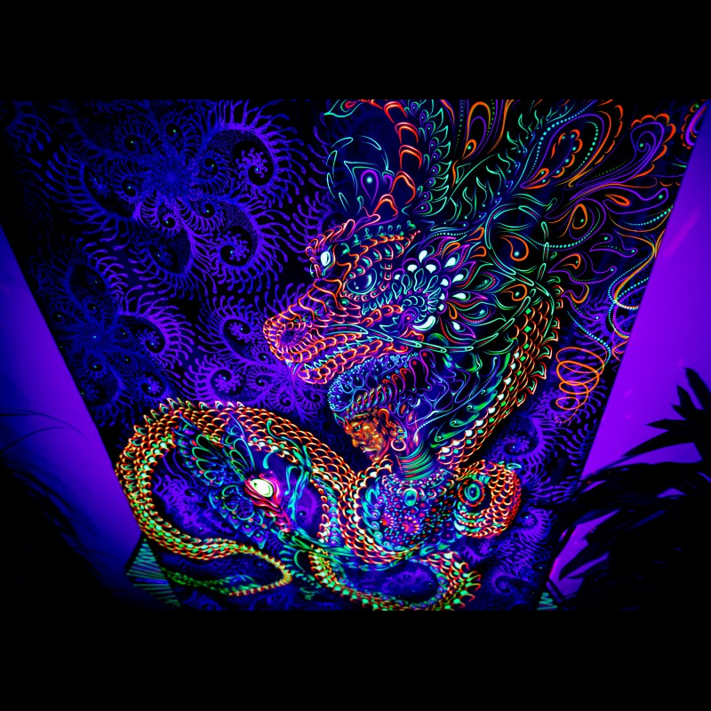"Trippy Wall Hangings ""Dragonita"""
