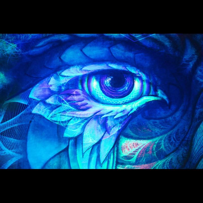 Fluorescent Bohemian Wall Art «Nothern Festival»