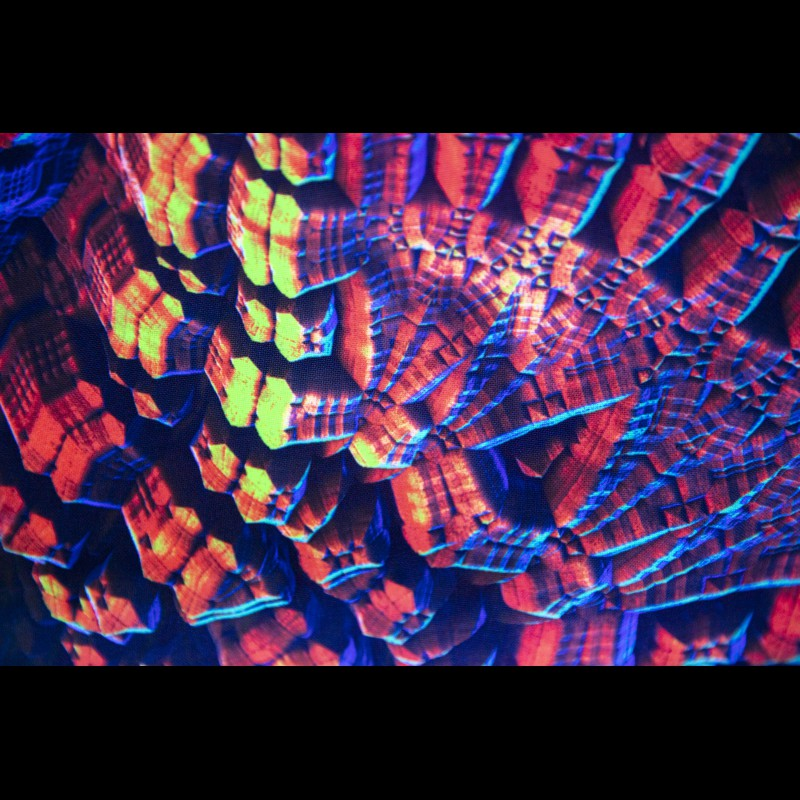 Psychedelic fluorescent painting «Gamaun»