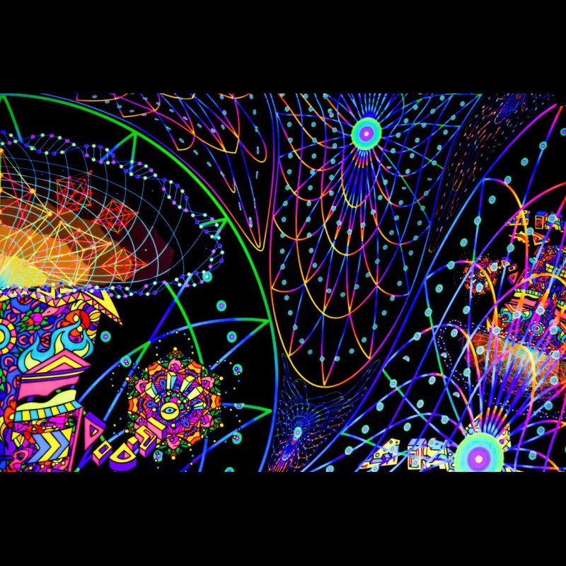 """trippy mushroom blacklight tapestry """"The Doors of Perception"""""""