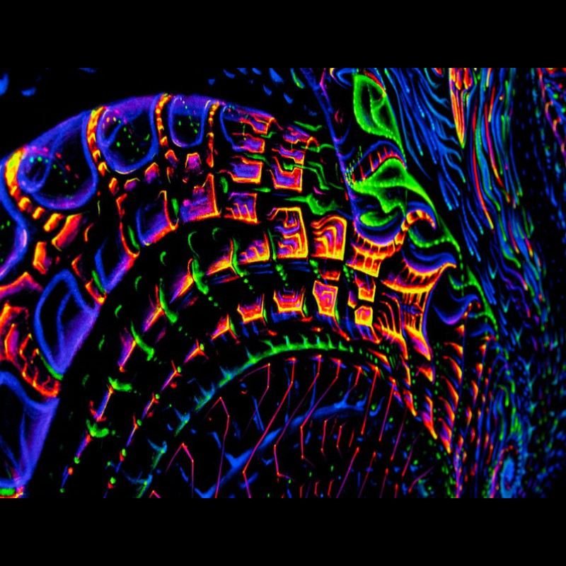 Fractal Trippy Backdrop «Creativity»