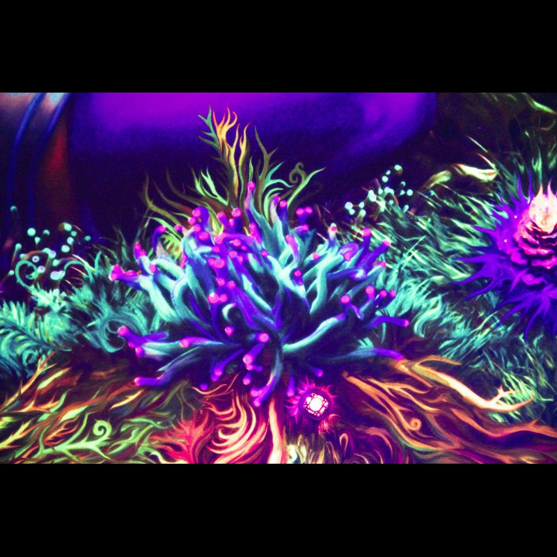 Psychedelic Room Deco Hippie Сarpet «Alice»