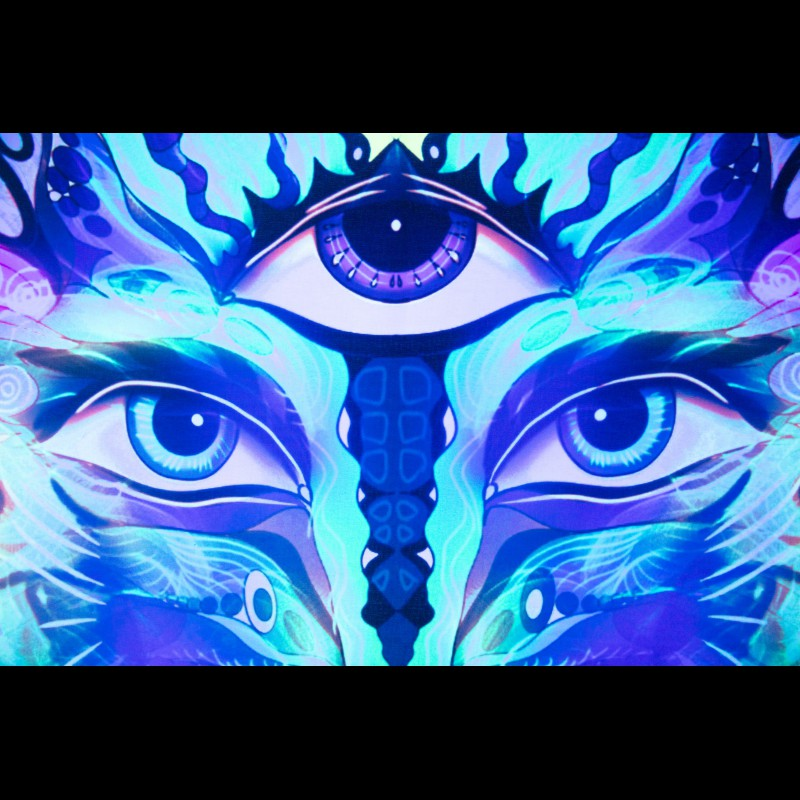 Trippy Psychedelic Visionary UV Home Deco «Seer»