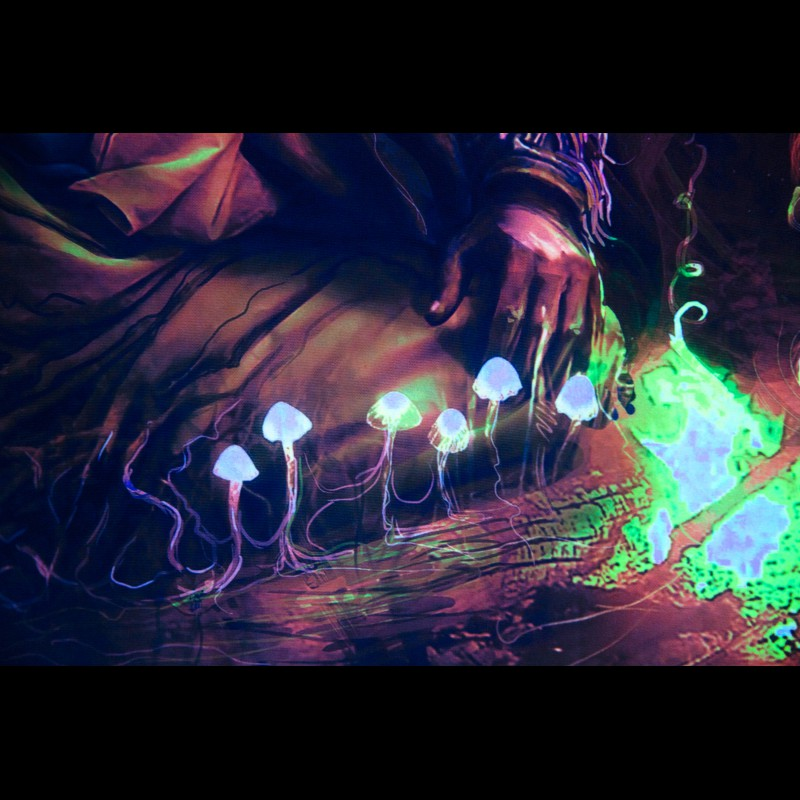 Blacklight Active Painting «Shaman's Laughter»