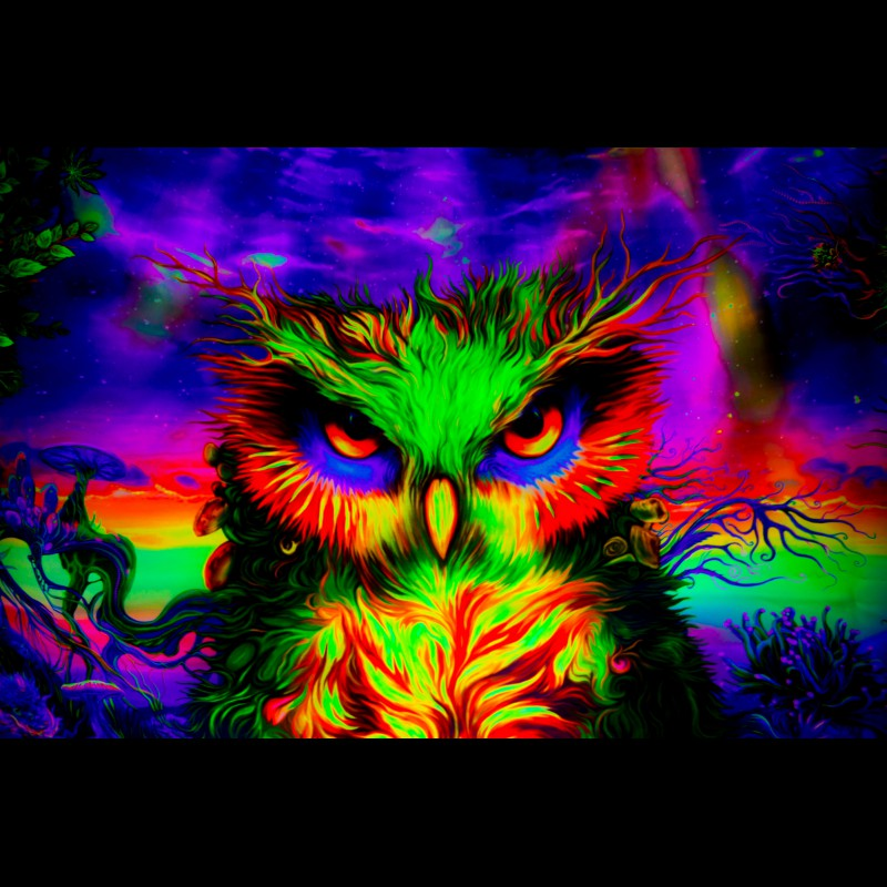 "Fluorescent psychedelic decor ""Owl look"""