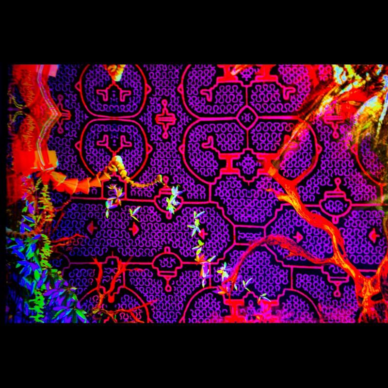 "fluorescent  festival backdrop ""Shipibo Mystery"""