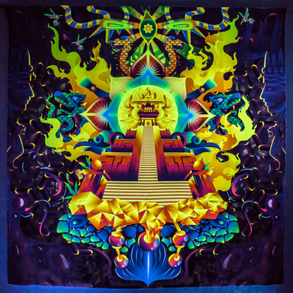 "Psychedelic Fluorescent Backdrop ""Mindcrash"""