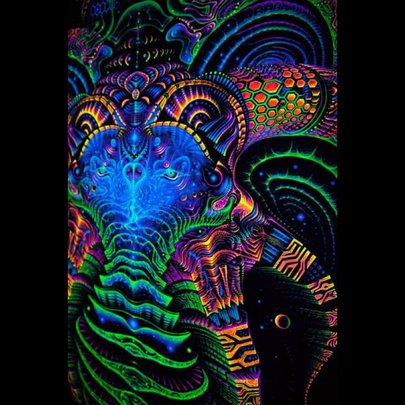 Cyberspace blacklight tapestry Matrix Archetype