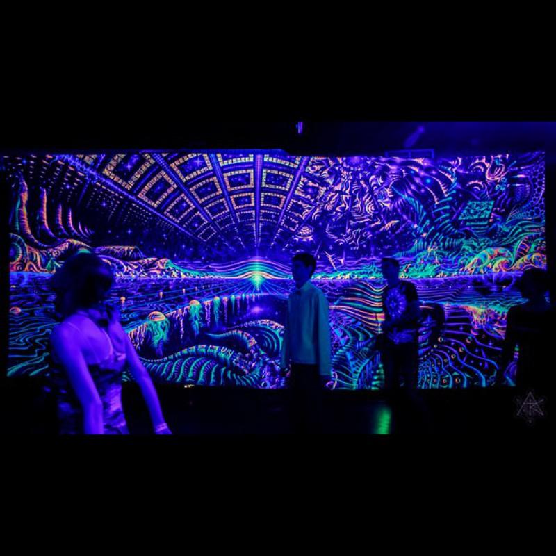 """Festival fluorescent visionary backdrop """"Terraforming"""""""